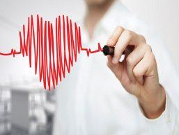 Principais diferenças entre HDL e LDL: conheça as funções do colesterol