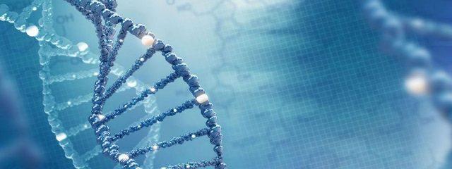 Você conhece os exames laboratoriais de nutrigenética?